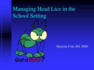 Overseeing Head Lice in the School Setting