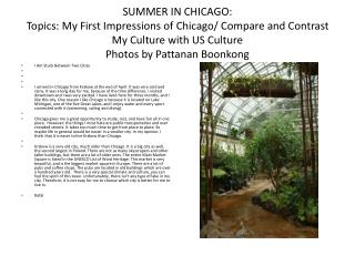 SUMMER IN CHICAGO: Themes: My Early introductions of Chicago/Thoroughly analyze My Way of life with US Society Photograp