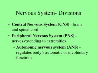Sensory system Divisions