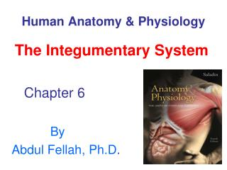 Human Life systems and Physiology