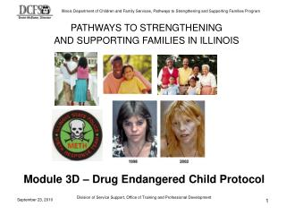 PATHWAYS TO Fortifying AND SUPPORTING FAMILIES IN ILLINOIS