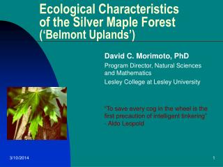 Biological Attributes of the Silver Maple Timberland ('Belmont Uplands')