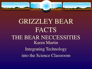 GRIZZLEY BEAR Certainties THE BEAR NECCESSITIES