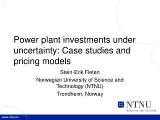 Power plant ventures under vulnerability: Contextual analyses and estimating models