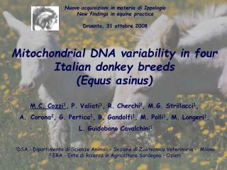 Mitochondrial DNA variability in four Italian jackass breeds (Equus asinus)