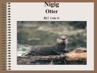 Nigig Otter By : Cody O.