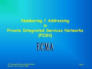 Numbering/Tending to in Private Incorporated Administrations Systems (PISN)