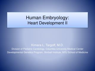 Human Embryology: Heart Improvement II