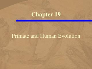 Primate and Human Advancement