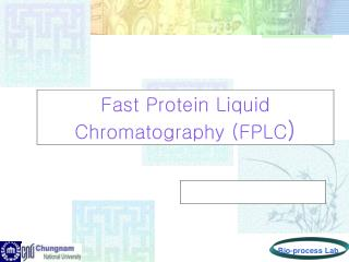 Quick Protein Fluid Chromatography (FPLC )
