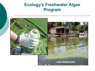 Biology's Freshwater Green growth Program