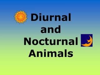 Diurnal and Nighttime Creatures