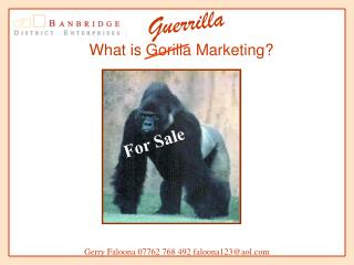 What is Gorilla Advertising?