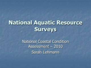 National Sea-going Asset Reviews