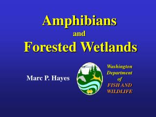 Creatures of land and water and Forested Wetlands