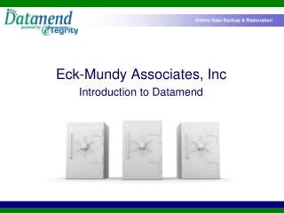 Eck-Mundy Partners, Inc Prologue to Datamend
