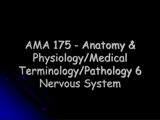 AMA 175 - Life systems and Physiology/Therapeutic Wording/Pathology 6 Sensory system