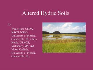 Adjusted Hydric Soils