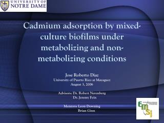 Cadmium adsorption by blended society biofilms under metabolizing and non-metabolizing conditions