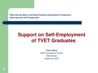 Ethio German Micro and Small Enterprise Development Program Ethio-German TVET Program