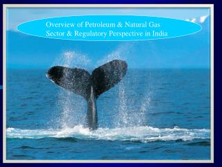 Outline of Petroleum Natural Gas Sector Regulatory Perspective in India