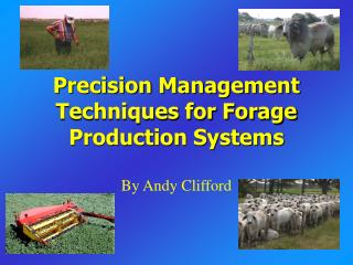 Exactness Management Techniques for Forage Production Systems