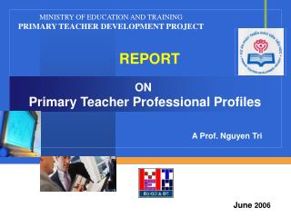 ON Primary Teacher Professional Profiles