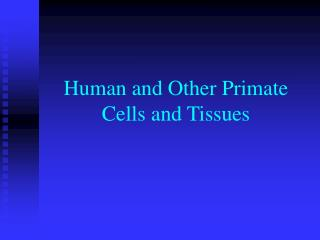 Human and Other Primate Cells and Tissues