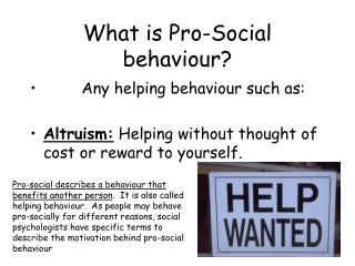 What is Pro-Social conduct