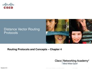 Separation Vector Routing Protocols