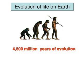 Development of life on Earth