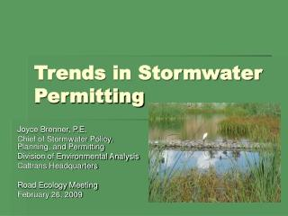 Patterns in Stormwater Permitting