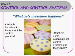 MODULE 11 CONTROL AND CONTROL SYSTEMS