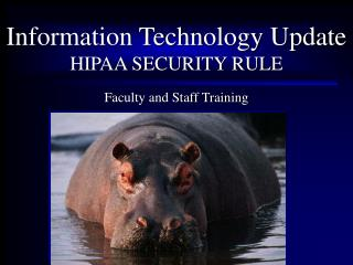 What is the HIPAA Security Rule Authority Definition Scope Requirements Administrative Physical Technical Individual R