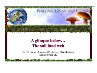 What is soil science What part does it play in soil quality