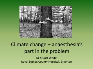 Environmental change anesthesia s part in the issue