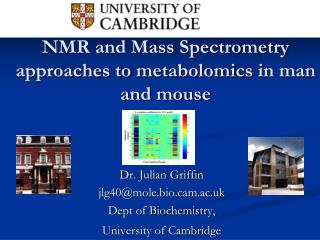 NMR and Mass Spectrometry ways to deal with metabolomics in man and mouse