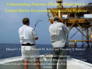 Comprehension Patterns of Fishery Production in Coastal Marine Ecosystems Impacted by Hypoxia