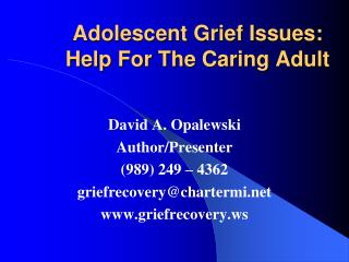 Pre-adult Grief Issues: Help For The Caring Adult